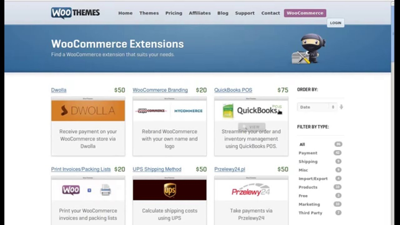 Extensions and plug-ins for online store could decrease small business ecommerce website cost